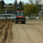 Cultivating a pasture