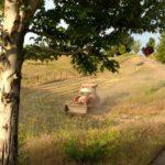 Yard Prep Idaho